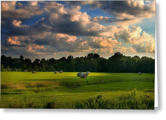 Dramatic Lighting Greeting Cards - Field of Grace Greeting Card by T Lowry Wilson