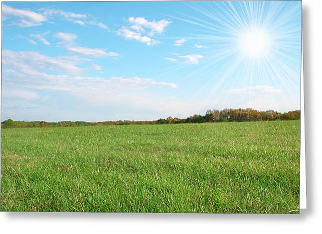Flour Greeting Cards - Field Of Green Greeting Card by Darren Fisher