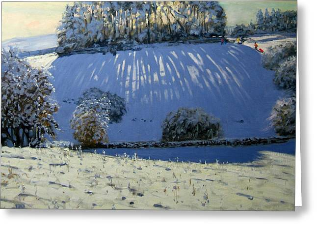 Toboggan Greeting Cards - Field of shadows Greeting Card by Andrew Macara