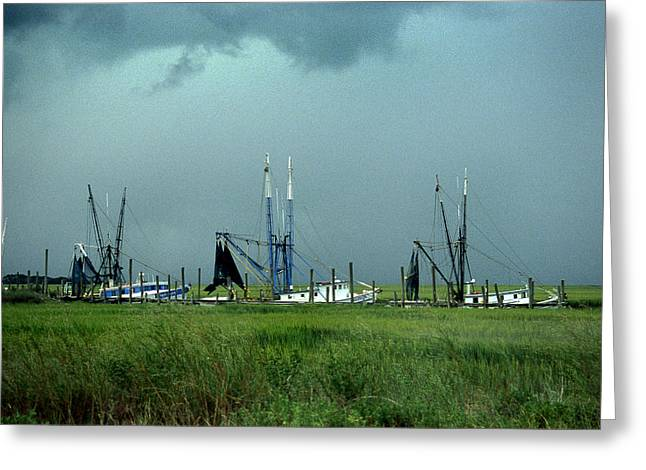 Dredge Greeting Cards - Field Of Shrimpers Greeting Card by Skip Willits