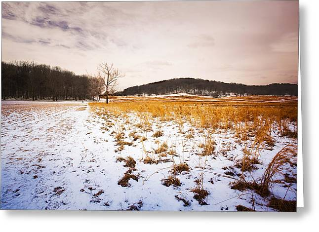 Framed Winter Snow Photograph Greeting Cards - Field of Snow Greeting Card by Jack Booth