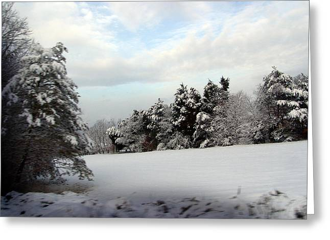 Evergreen With Snow Greeting Cards - Field of Snow Greeting Card by Oenita Blair