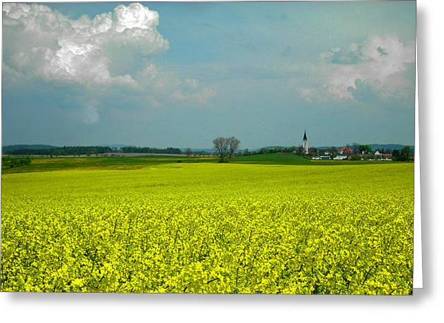 Farbenfroh Greeting Cards - Fields of Gold ... Greeting Card by Juergen Weiss