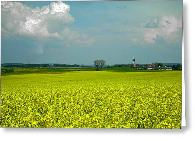 Fields Of Gold ... Greeting Card by Juergen Weiss