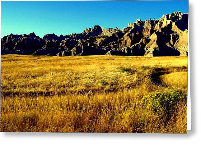 Scenic Drive Greeting Cards - Fields of Gold Greeting Card by Karen Wiles