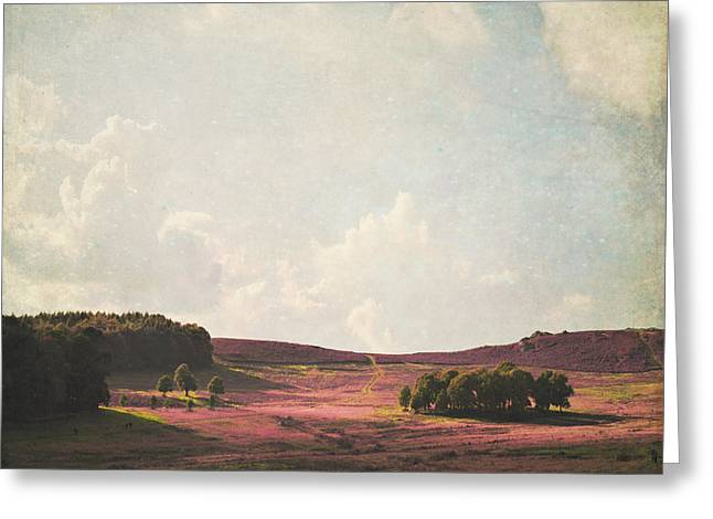 Lyn Randle Greeting Cards - Fields of Heather Greeting Card by Lyn Randle