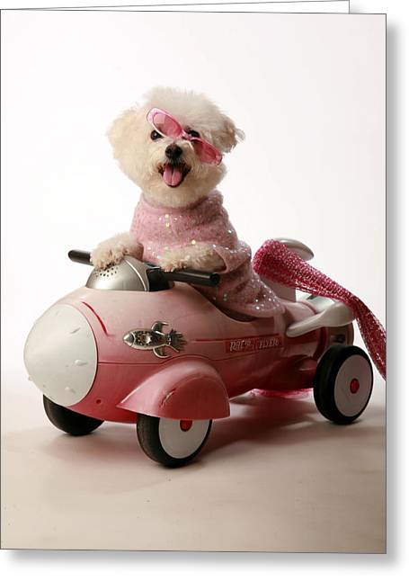 Family Member Greeting Cards - Fifi experiances a rough landing in her rocket car Greeting Card by Michael Ledray