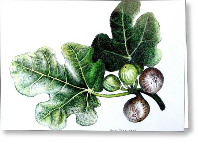 Figs Greeting Card by Ben Saturen