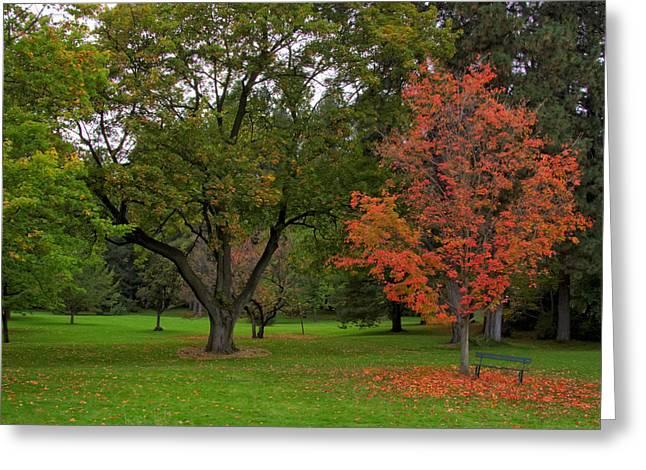 Spokane Greeting Cards - Finch Arboretum Autumn 1 - Spokane Washington Greeting Card by Daniel Hagerman