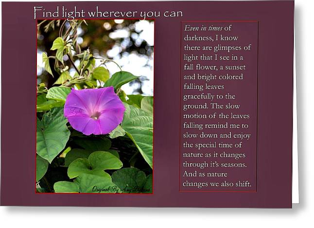 Empowerment Greeting Cards - Find Light Wherever You Can Greeting Card by Amy Delaine