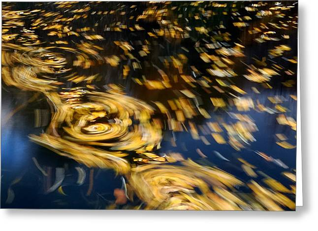 Nature Study Greeting Cards - Finding Center - Autumn Abstract Greeting Card by Steven Milner