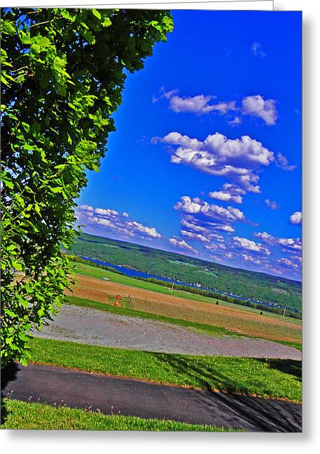Blue Grapes Greeting Cards - Finger Lakes Country Greeting Card by Elizabeth Hoskinson