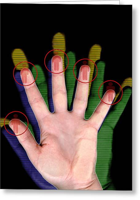 Identification Symbol Greeting Cards - Fingerprint Biometrics Greeting Card by Victor Habbick Visions