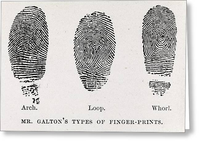 Captions Greeting Cards - Fingerprint Types, 17th Century Greeting Card by Middle Temple Library