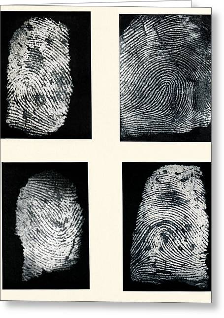 Quartet Greeting Cards - Fingerprints Made Visible With Ink Greeting Card by Sheila Terry