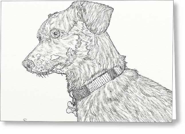 Finn In Black And White Greeting Card by Salvadore Delvisco