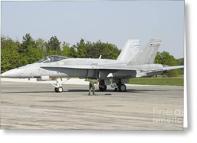 F-18 Greeting Cards - Finnish Air Force F-18c Hornet Greeting Card by Timm Ziegenthaler