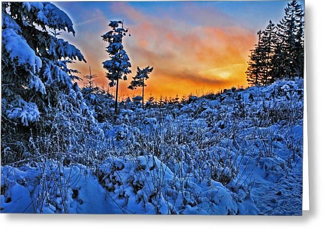 Christmas Art Greeting Cards - Fire and Ice Greeting Card by Bonnie Bruno