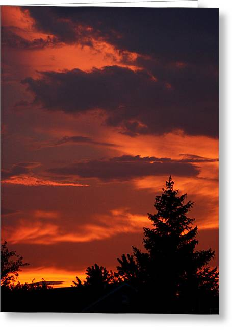 Sillouhuette Greeting Cards - Fire in the Night Greeting Card by Dan McCafferty
