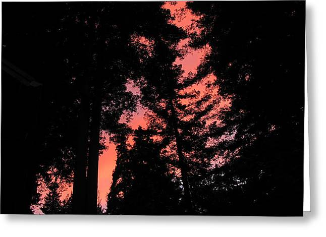Best Sellers -  - Santa Cruz Art Greeting Cards - Fire in the Sky Felton Sunset 2 Greeting Card by Larry Darnell