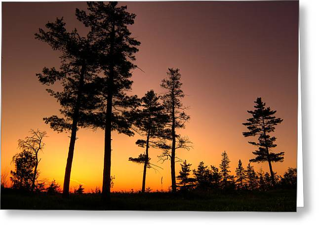 First Sunset Greeting Cards - FIRE in the SKY Greeting Card by Jakub Sisak