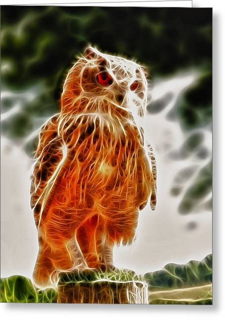 Owl Picture Greeting Cards - Fire owl v1 Greeting Card by Tilly Williams