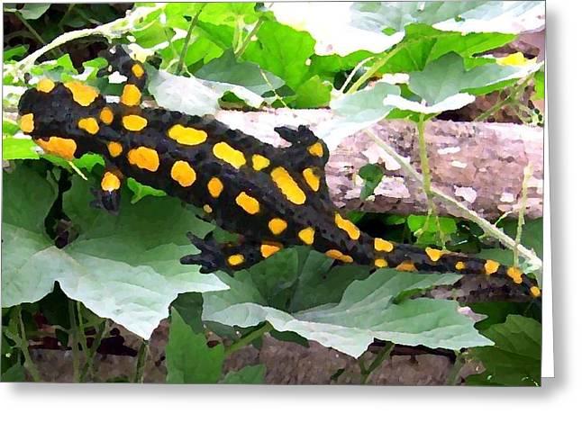 Fire Salamander Greeting Cards - Fire Salamander Greeting Card by Vejay Singh