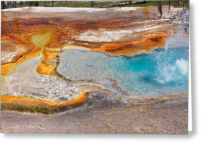 Alga Greeting Cards - Firehole Spring Splash Greeting Card by Charles Kozierok