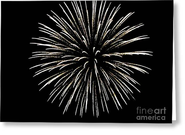 Black And White Photos Pyrography Greeting Cards - Firework 2 Greeting Card by Serena Ballard