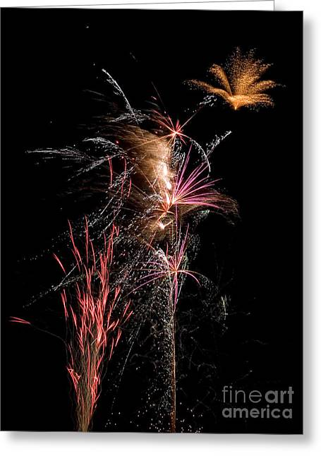 Vertical Greeting Cards - Fireworks Greeting Card by Cindy Singleton