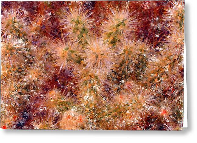 Marilyn Sholin Greeting Cards - Fireworks Explosion Greeting Card by Marilyn Sholin