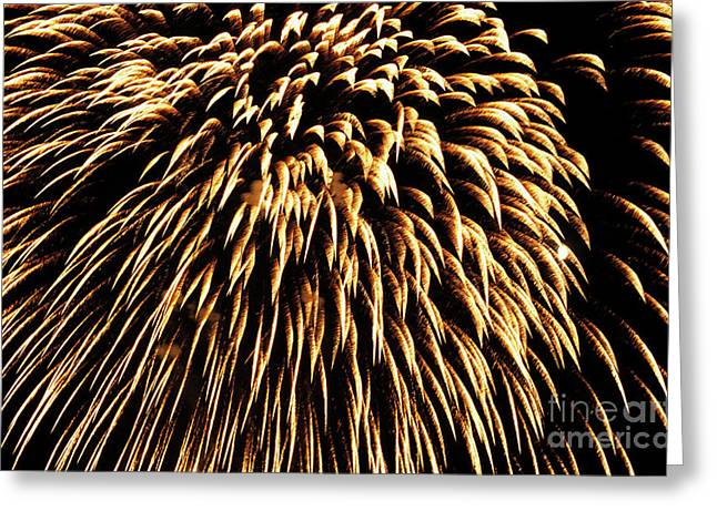 Bastille Photographs Greeting Cards - Fireworks light up the sky Greeting Card by Sami Sarkis