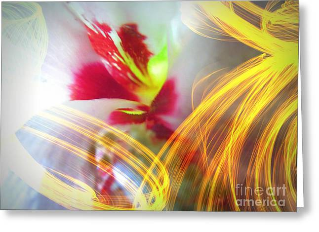 Althea Digital Art Greeting Cards - Fireworks Greeting Card by Renee Trenholm
