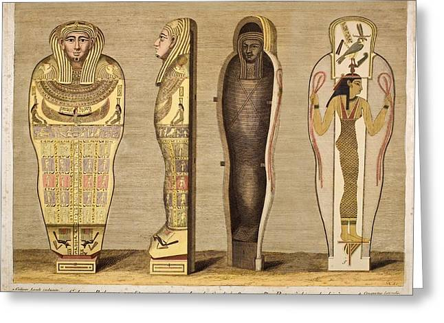 Egyptian Sarcophagus Greeting Cards - First British Museum Mummy And Coffin Greeting Card by Paul D Stewart