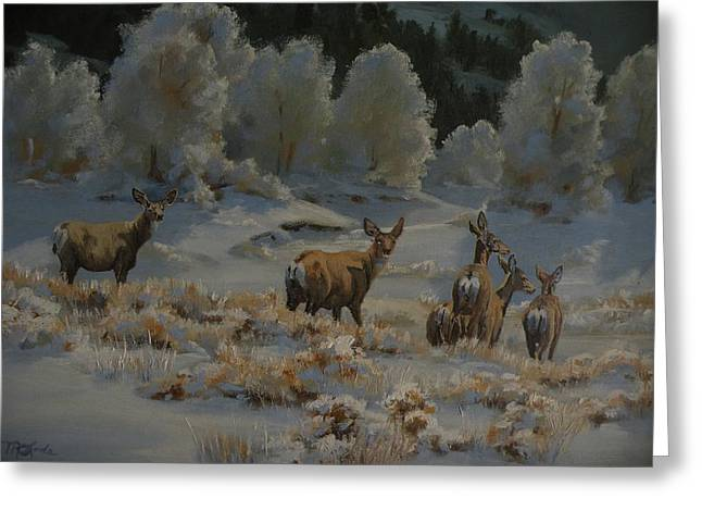 Mia Delode Greeting Cards - First Cold Snap Greeting Card by Mia DeLode