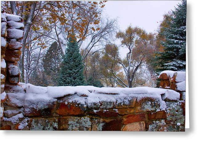Striking Images Greeting Cards - First Colorful Autumn Snow Greeting Card by James BO  Insogna