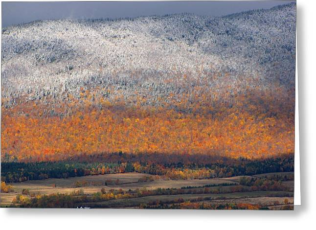 Francois Fournier Greeting Cards - First Snow On Mount St-Joseph NDB Quebec Canada Greeting Card by Francois Fournier