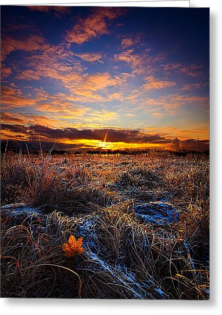 Geographic Greeting Cards - First Snow Greeting Card by Phil Koch