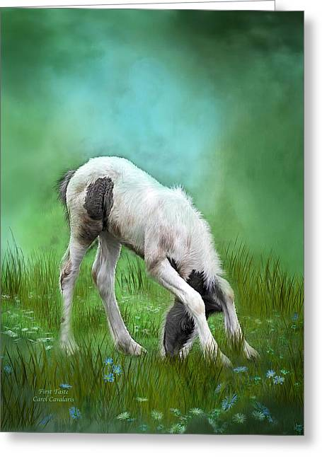 Foal Greeting Cards - First Taste Greeting Card by Carol Cavalaris