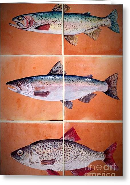 Etc. Ceramics Greeting Cards - Fish Mural On Terracotta Tiles Greeting Card by Andrew Drozdowicz