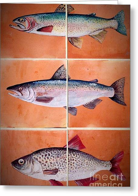 Trout Fishing Ceramics Greeting Cards - Fish Mural On Terracotta Tiles Greeting Card by Andrew Drozdowicz