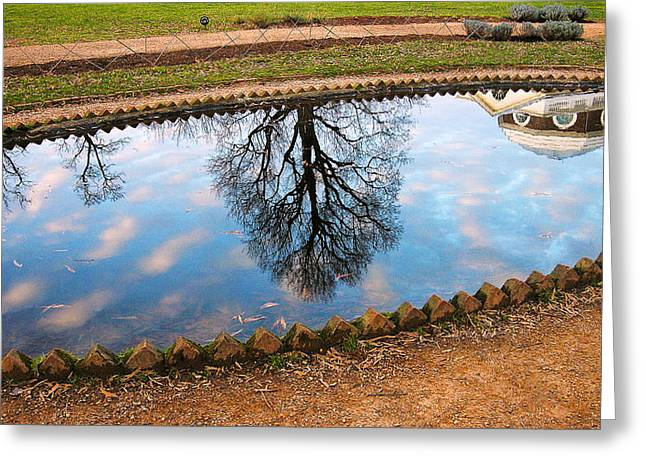 Fish Pond II Greeting Card by Steven Ainsworth
