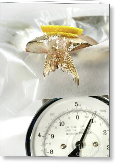 Extinct Greeting Cards - Fish with lemon slice on weight scale Greeting Card by Sandra Cunningham