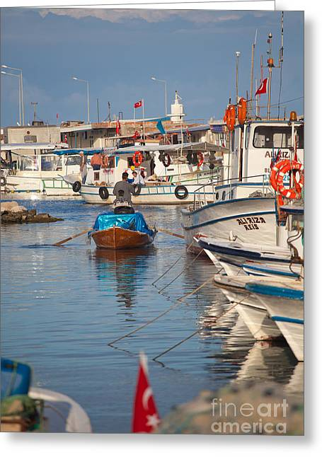 Fisherman At Yumurtalik Greeting Card by Gabriela Insuratelu