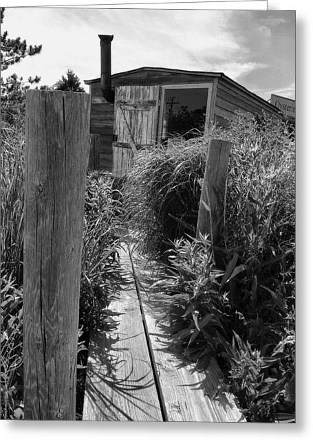 Shack Greeting Cards - Fishermans Shanty Greeting Card by Steven Ainsworth