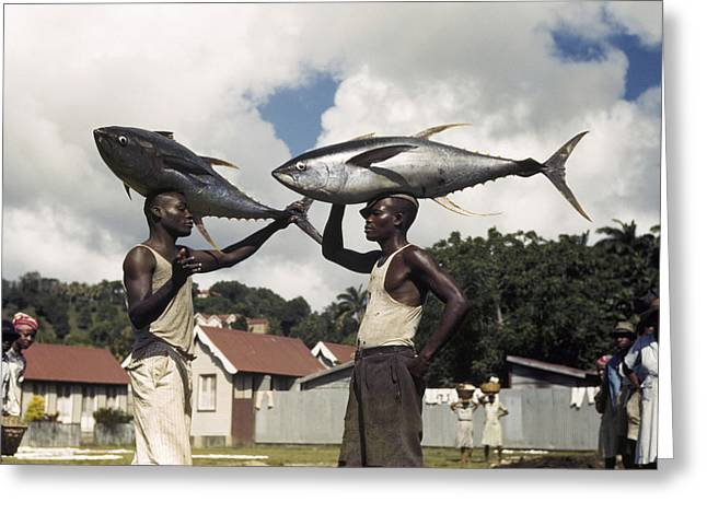 Two Fishing Men Greeting Cards - Fishermen Balance Yellowfin Tuna Fish Greeting Card by Luis Marden