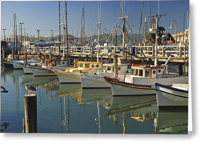 Sailboats In Harbor Greeting Cards - Fishermens Terminal San Francisco Greeting Card by Stuart Westmorland