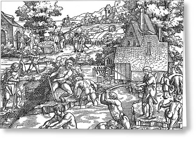 Netting Greeting Cards - Fishing, 16th Century Greeting Card by Photo Researchers