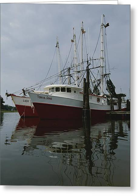 Reflection.etc Greeting Cards - Fishing Boats At Dock Greeting Card by Medford Taylor