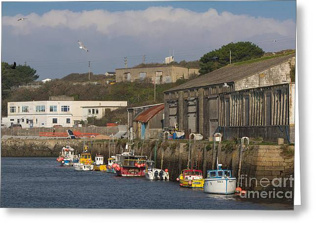 Kernow Greeting Cards - Fishing Boats Hayle Harbour Greeting Card by Brian Roscorla